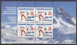 GRÖNLAND  Block 5, Gestempelt, Olympische Winterspiele Lillehammer, 1994 - Blocks & Sheetlets