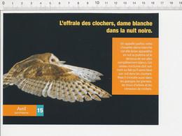 2 Scans Effraie Des Clochers Chouette Oiseau / Impala Et Pique-boeuf / Animal GEO3 - Sin Clasificación