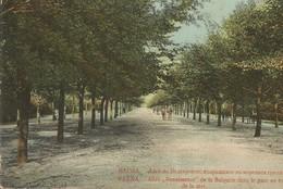 "001048 - BULGARIA - VARNA - ALLEE ""RENAISSANCE DE LA BULGARIE' DANS LE PARC AU BORD DE LA MER - ED. DIMITROV - 1911 - Bulgaria"