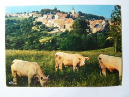 SOMBERNON (cote D'or) - Derniers Contreforts Du Morvan Et Du Plateau De Langres Réputés Pour Leur élevage - Sonstige Gemeinden