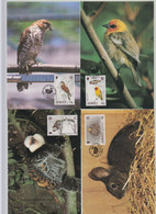 Jersey 1988 Wildlife Set 5 On Maxicard - Jersey