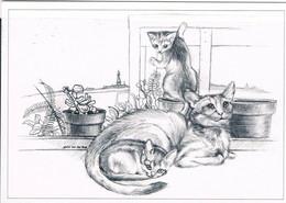 Chats  - 3 Cats -katzen -getekende  Poezen - Chats