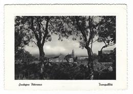 9674 - SARDEGNA PITTORESCA TRANQUILLITA' 1956 - Unclassified