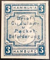 Germany Stadtpost/Privatpost Hamburg 3 Pfg 1889 Michel E 39 Unused - Sello Particular