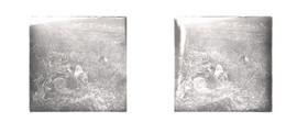 Plaque De Verre. Photo . Négatif. Guerre 14/18.  Squelette De Soldat - Glass Slides