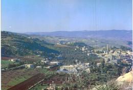 Asie - Jordanie - Rumemin Village, Near Amman - Jordan