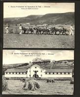 Conjunto De 2 Postais: ALUNOS E ESCOLA De AGRICULTURA PAIÃ (D.Dinis) - ODIVELAS (Lisboa) PORTUGAL - Lisboa