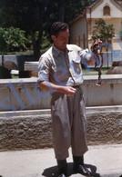 3 SLIDES 1949 COBRA SNAKE SERPENT ZOO SP BRASIL BRAZIL AMERICA 35mm PHOTO FOTO N4 - Diapositives (slides)