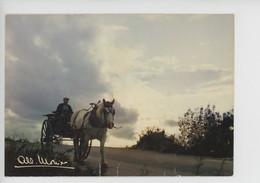 """Albert Monier Photographe : Paysan Attelage Cheval Blanc """"il Semble Que Wlaminck....."""" Cp Vierge Les Photos A. M. - Unclassified"""