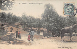19-USSEL- LE CHAMP DE FOIRE - Ussel