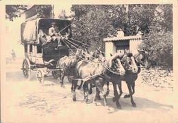AUVERGNE / VERS 1880 - PHOTO 12X9 - POSTILLON COCHER DILIGENCE - Auvergne Types D'Auvergne