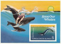 ILES TURQUES ET CAIQUES - Faune, Sauvegarde Des Requins, Neptune - MNH - Turks E Caicos