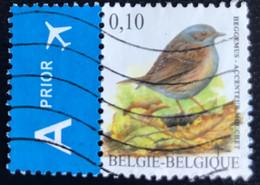 België - Belgique - Belgium - G1/31 - (°)used - 2008 - Michel 3796 - Vogels - Gebraucht