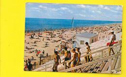 LACANAU-OCEAN La Plage (Combier) Gironde (33) - Sonstige Gemeinden