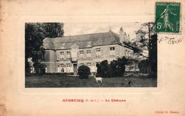 Audruicq (Pas De Calais) Le Château - Cliché G. Damez - Carte De Luxe - Audruicq