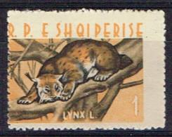 ALB 14 - ALBANIE N° 598 Neuf* Lynx VARIETE Dentelure Décalée - Albania
