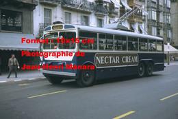 Reproduction Photographie Ancienne D'un Trolleybus Avec Publicité Nectar Cream à San-Sebastian Espagne 1968 - Reproductions