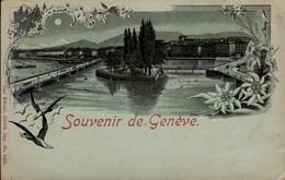 GENEVE      ( SUISSE )    SOUVENIR DE GENEVE - Greetings From...