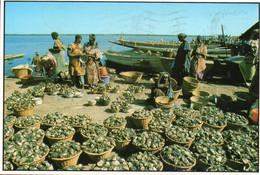 ~~ Ziguinchor - Le Marché Aux Huitres (beau Timbre) - Gambia