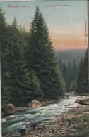 Okertal - Partie Nahe Der Insel - 1909 - Other