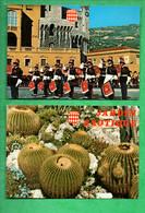 """MONACO . """" LA RELÈVE DE LA GARDE DEVANT LE PALAIS PRINCIER """" & """" JARDIN EXOTIQUE """" . 2 CPM - Réf. N°30035 - - Collections & Lots"""