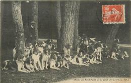 44 MEUTE AU ROND POINT DE LA FORET DU GAVRE N° 312920 - Unclassified