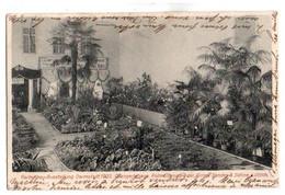 (Hesse) 072, Darmstadt, Gartenbau-Ausstellung Darmstad, 1905, Orangerihaus - Darmstadt