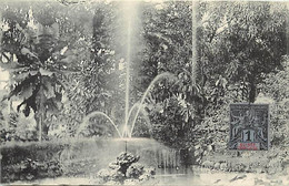 Pays Div- Ref Y322- Guinée - Conakry -  Jardin Public - La Cascade - - French Guinea