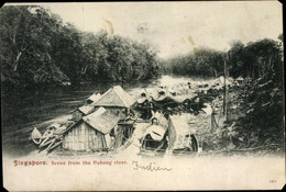 CPA Singapur, Scene From The Pahang River, Hausboote Im Fluss - Singapore