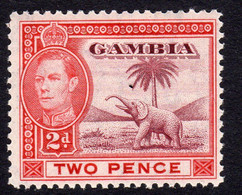 Gambia GVI 1938 Elephant Definitives, 2d Lake & Scarlet Value, Hinged Mint, SG 153a (BA2) - Gambia (...-1964)