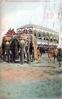 Inde - Elephants Carriage Of The Maharajah Of Rewah - India