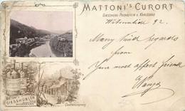 Tchéquie- Précurseur 1892 - Advertising - Mattoni's Kurort - Giesshübl - Puchstein B Karlsbad - Tsjechië