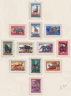 CONGO MNH** COB 400/11 FAUNE - Republic Of Congo (1960-64)