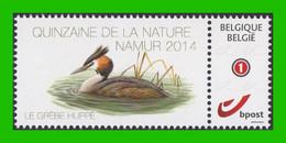 BUZIN - Grèbe Huppé** Timbre + Folder - Quinzaine De La Nature - Namur 13-09-2014 - 1985-.. Birds (Buzin)