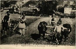 CPA AK Types Et Scenes. Le Labourage MACEDONIA SERBIA (709365) - Macedonia