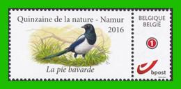 BUZIN - Pie Bavarde - Timbre + Folder - Quinzaine De La Nature - Namur 2016 - Private Stamps