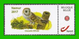 BUZIN - Chouette Effraie - Timbre + Folder - Quinzaine De La Nature - Namur 2017 - 1985-.. Birds (Buzin)