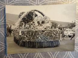 TAHITI PHOTO CARNAVAL CHAR DES ENFANTS 1975 12.5 X 9 CM - Tahiti
