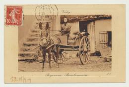 VICHY - Paysanne Bourbonnaise - Charrette  - Attelage -  Folklore - Vichy