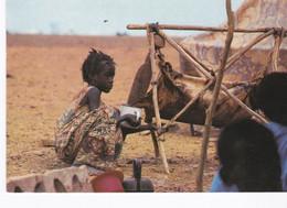 Mauritanie, CPSM La Vie Sous La Tente - Mauritania