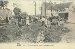 W2-45) FERRIERES En GATINAIS (Loiret) Ecorceurs D ' Osier - Altri Comuni