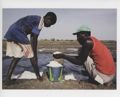 Afrique Guinée 2011  Zone De Douprou Marais Salants De Ténéplan (tel Paludiers De Guérande) Jonas Bendiksen Photographe - Guinea