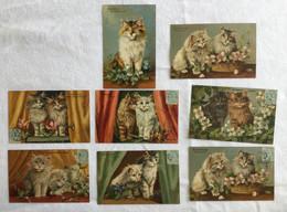 Lot De 8 Cartes -Fleurs Avec Chats -669 - Gatos