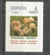 ESPAÑA TUSELLO SETAS HONGOS FUNGI MUSHROOM MARASMIUS OREADES - Mushrooms
