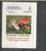 ESPAÑA TUSELLO SETAS HONGOS FUNGI MUSHROOM RUSSULA TORULOSA - Mushrooms