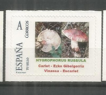 ESPAÑA TUSELLO SETAS HONGOS FUNGI MUSHROOM NYGROPHORUS RUSSULA - Mushrooms