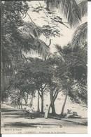 108 - CONAKRY - PROMENADE DE LA CORNICHE  ( Animées ) - French Guinea