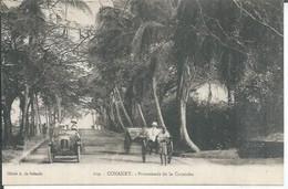 109 - CONAKRY - PROMENADE DE LA CORNICHE  ( Animées ) - French Guinea