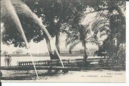106 - CONAKRY - LA FONTAINE  ( Animées ) - French Guinea