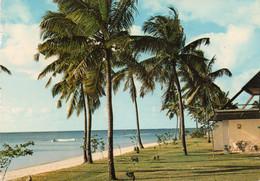 ~~ Ile Maurice - Trou Aux Biches - Mauritius